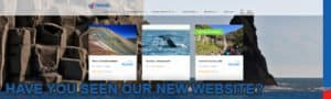 Email-signatures - NEW-WEBSITE-EMAIL.jpg