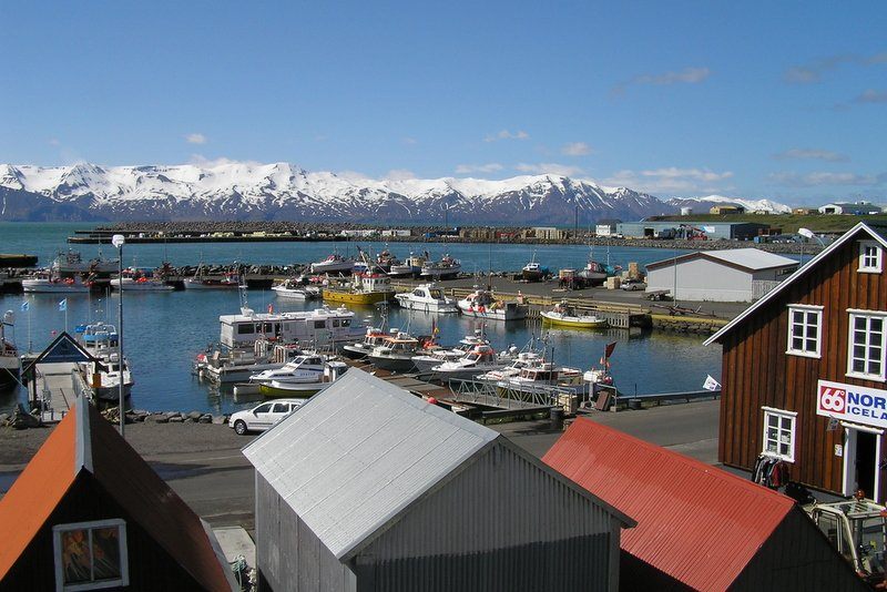 Best-of-North-Iceland - Husavik-Whale-Watching-Capital.jpg