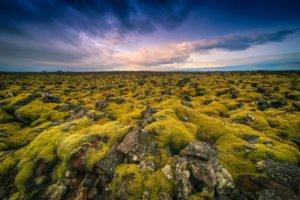 Spectacular-Iceland - Lava-fields-in-Iceland.jpg