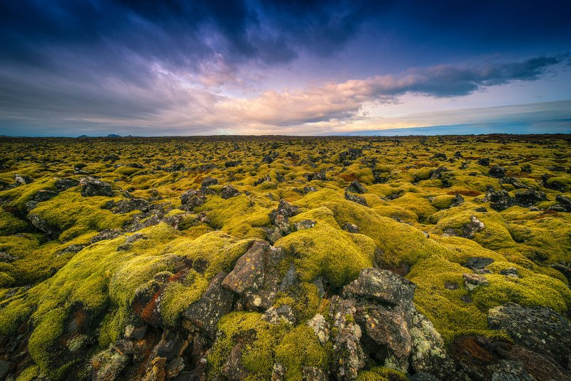 Spectacular-Iceland - Lava-fields-in-Iceland.jpg