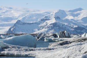 GJ-21-northen-lights-exploration - GJ-21-Jökulsárlón-glacial-lagoon-Frederikke-PCs-conflicted-copy-2016-05-17.jpg
