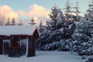 GJ-24-Land-of-northen-lights - GJ-24-Arhus-Cottages-in-Hella-South-Iceland-14.jpg