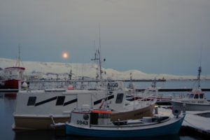 GJ-27-AURORAS-GLACIAL-LAGOON - GJ-27-Reykjavik-winter-4.jpg